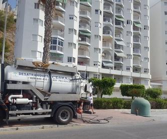 Electricidad: Multiservicios de Desatranques Ceska