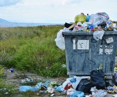 Campaña muestra los graves efectos de la basura en los hábitat de los animales