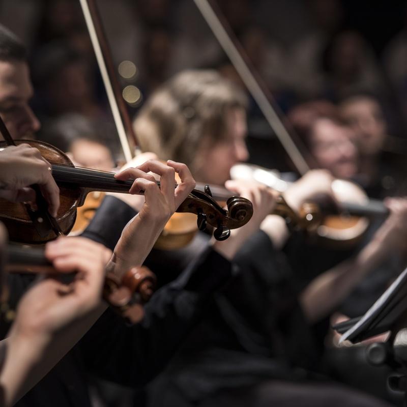 Violín: ¿Qué podemos ofrecerte? de Centro de Estudios Musicales Nerea Bilbao