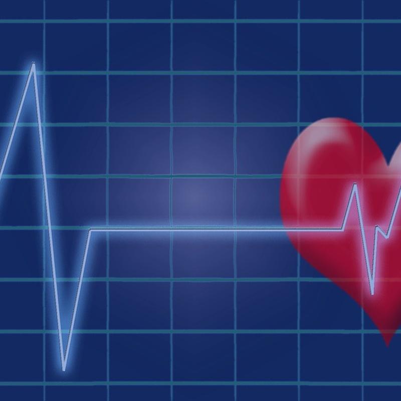 Cardiología: Especialidades de Portumedic
