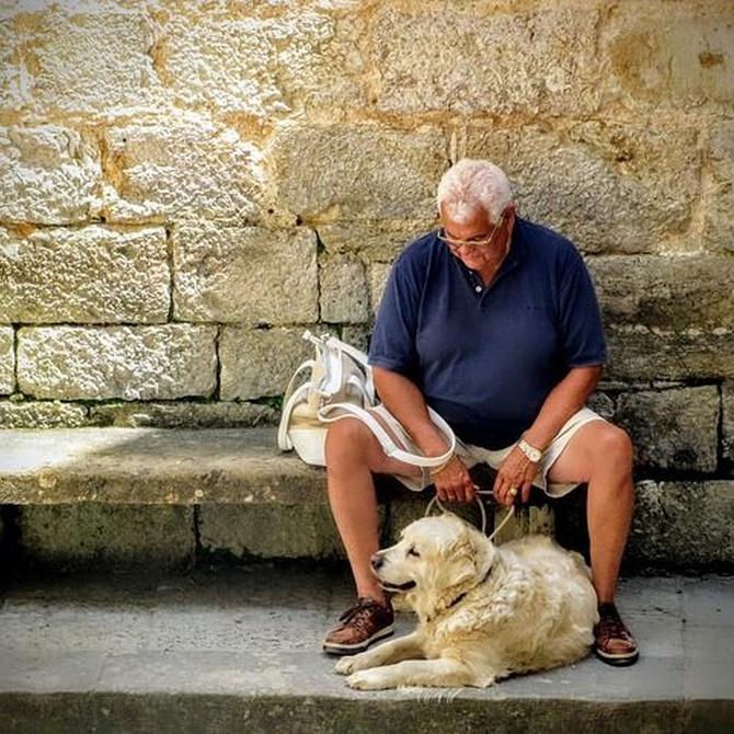Los beneficios de una mascota para las personas mayores