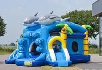 castillo hinchable cañon de bolas delfin