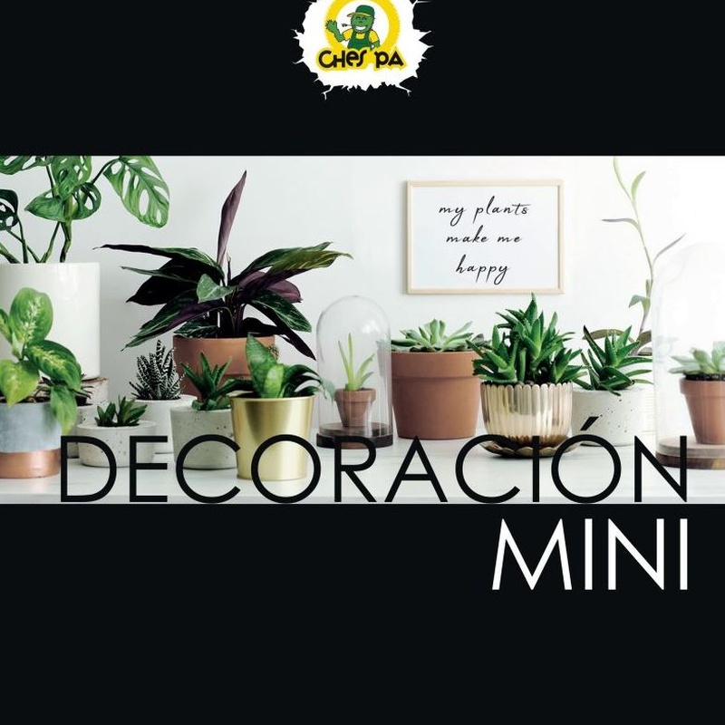 Decoración mini: ¿Qué hacemos? de Ches Pa, S.L.
