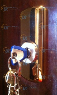 Protector DISEC para cerradura de perfil suizo