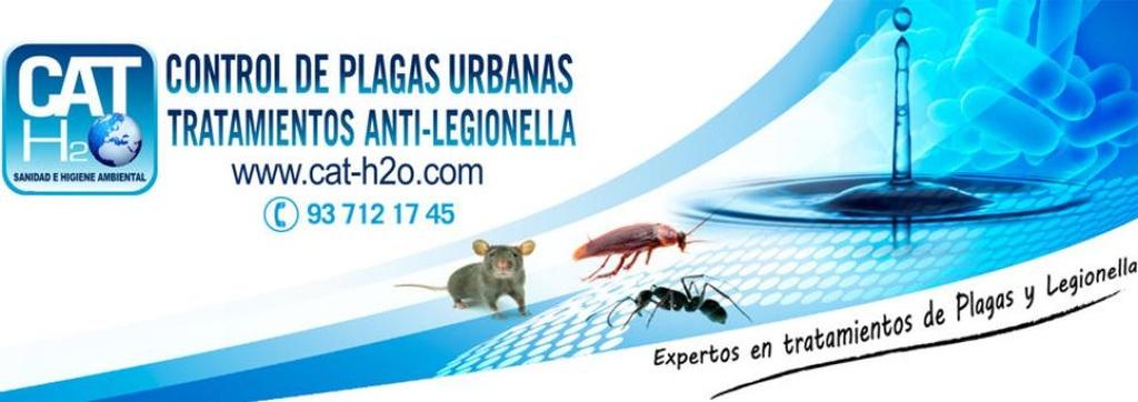 Eliminar ratas en Sabadell | Cat-H20