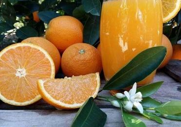 Naranjas zumo mediano 10 kg