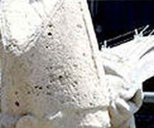 Sistema mixto (para proteger esculturas y monumentos) de redes y varillas
