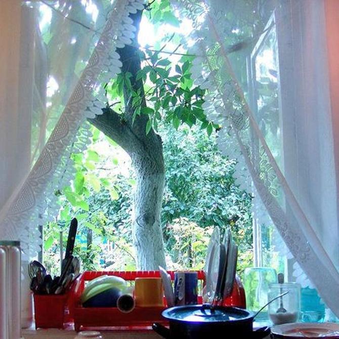 Diferencias entre una cortina y un visillo