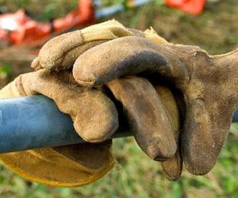 Mantenimiento de fincas y jardines: Trabajos de Panda Jardín