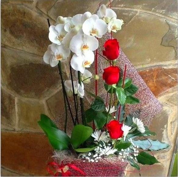 floristeria online Oviedo