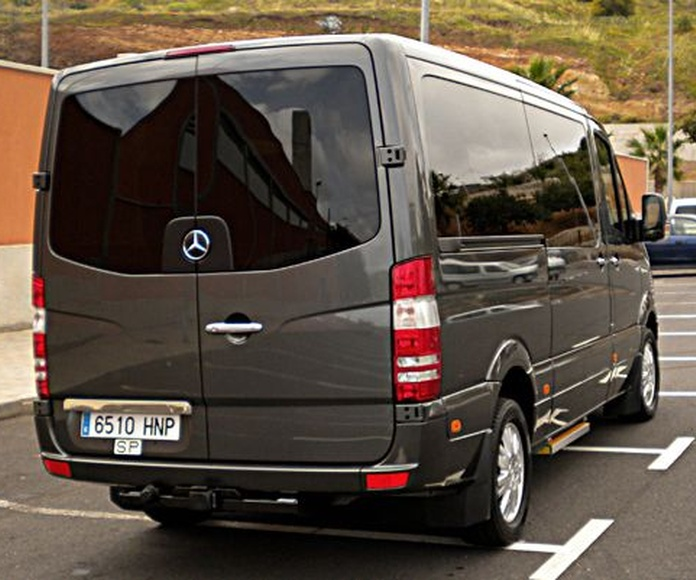 Minivans -  Mercedes - Benz Sprinter: Nuestros vehículos de HM LUXURY TRANSPORT