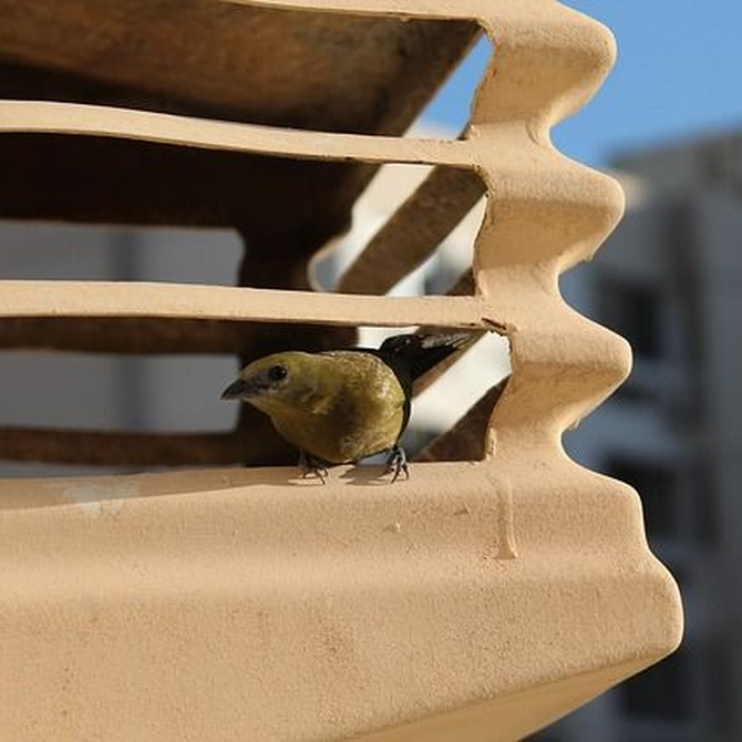 La importancia del mantenimiento de tu aire acondicionado