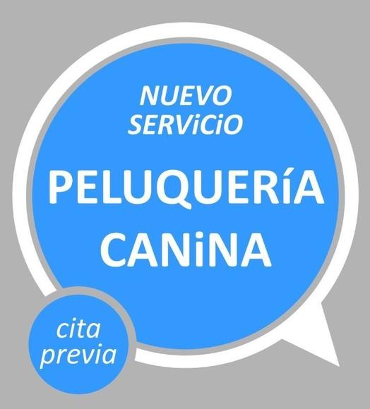 NUEVO SERVICIO DE PELUQUERÍA EN VETALLIANCE