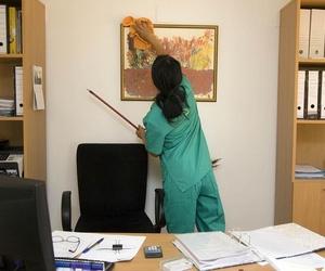Limpieza en locales y oficinas