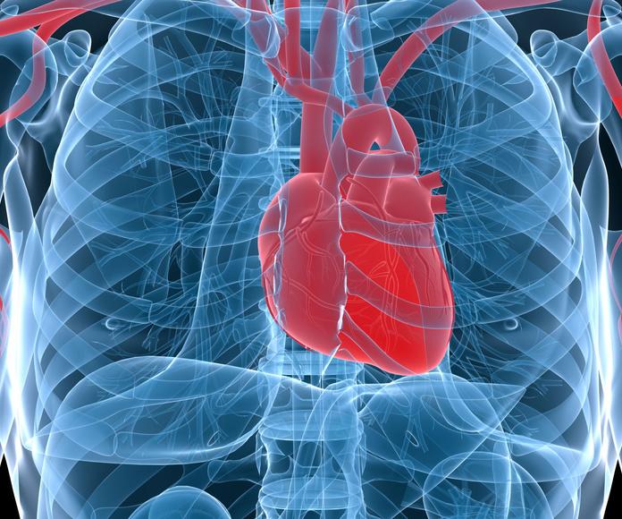 El corazón en la medicina tracional china