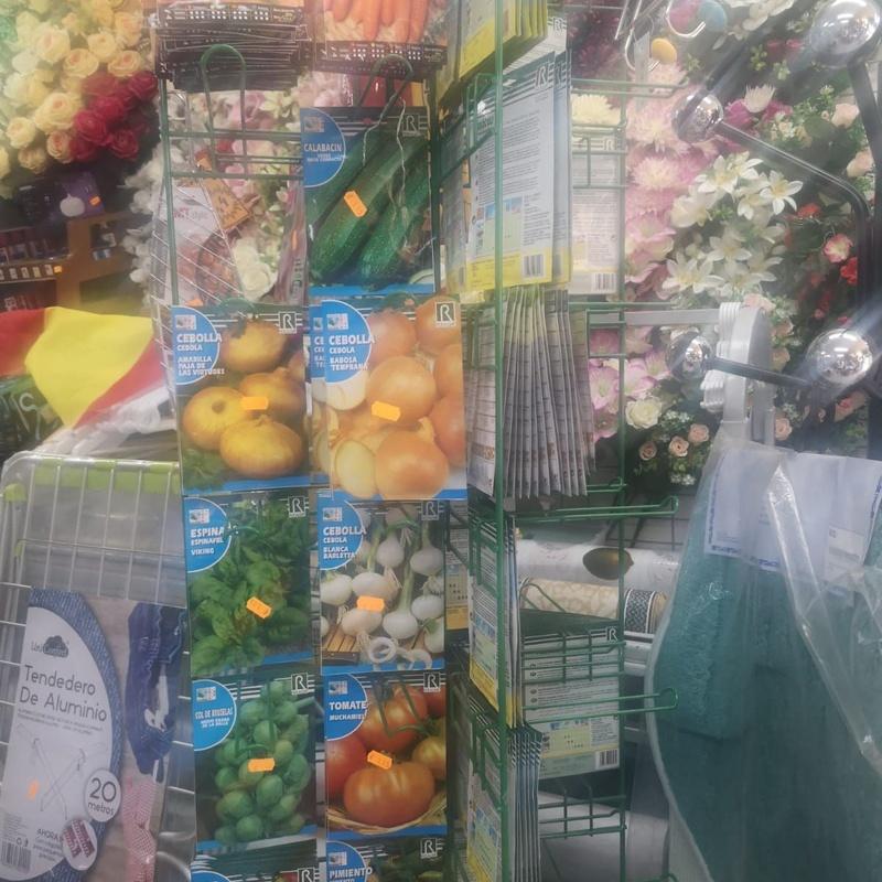 Jardinería: Servicios de Euro Melgar 100