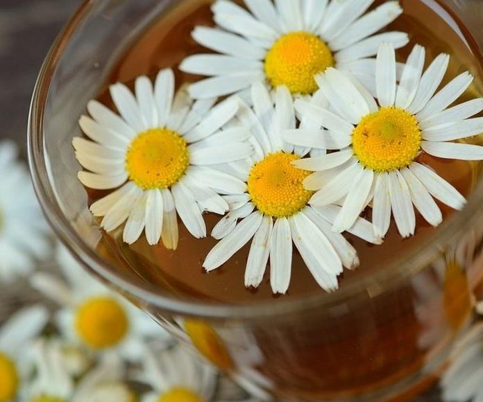 Parafarmacia y herboristería