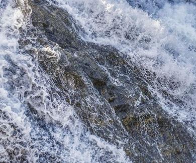 Demuestran el impacto de los residuos de medicamentos en los ríos