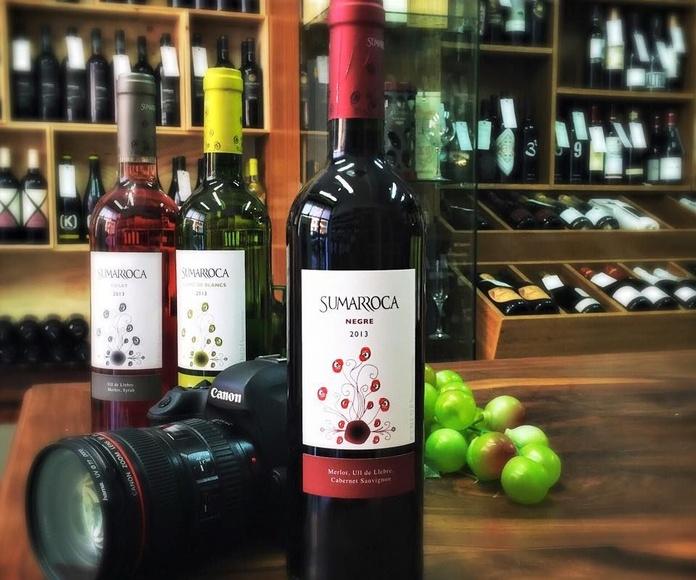 Distribuidor de vinos, cavas y licores: Distribuidor de vinos de Vins Alsina