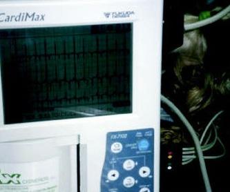 Electrocariografía. Las Palmas de Gran Canaria http://www.clinica-veterinaria-losgalgos.es/es/
