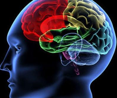 Avalan la eficacia de la terapia cognitivo-conductual frente a psicofármacos