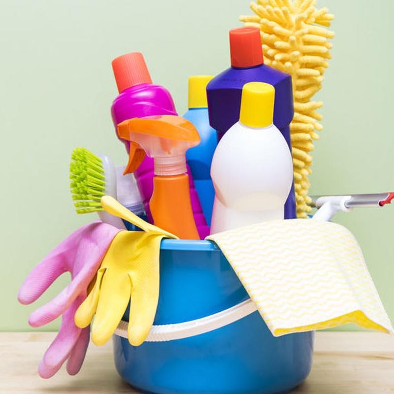 Empleada del hogar: Servicios de Todo Familia Servicios Sociales