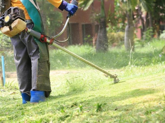 El mantenimiento de jardines en verano