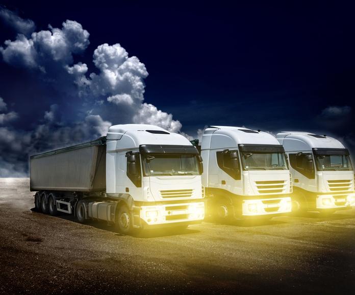 Flota: Servicios de Transportes Manchao
