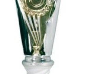 Todos los productos y servicios de Trofeos y Objetos conmemorativos: Trofeos Getafe