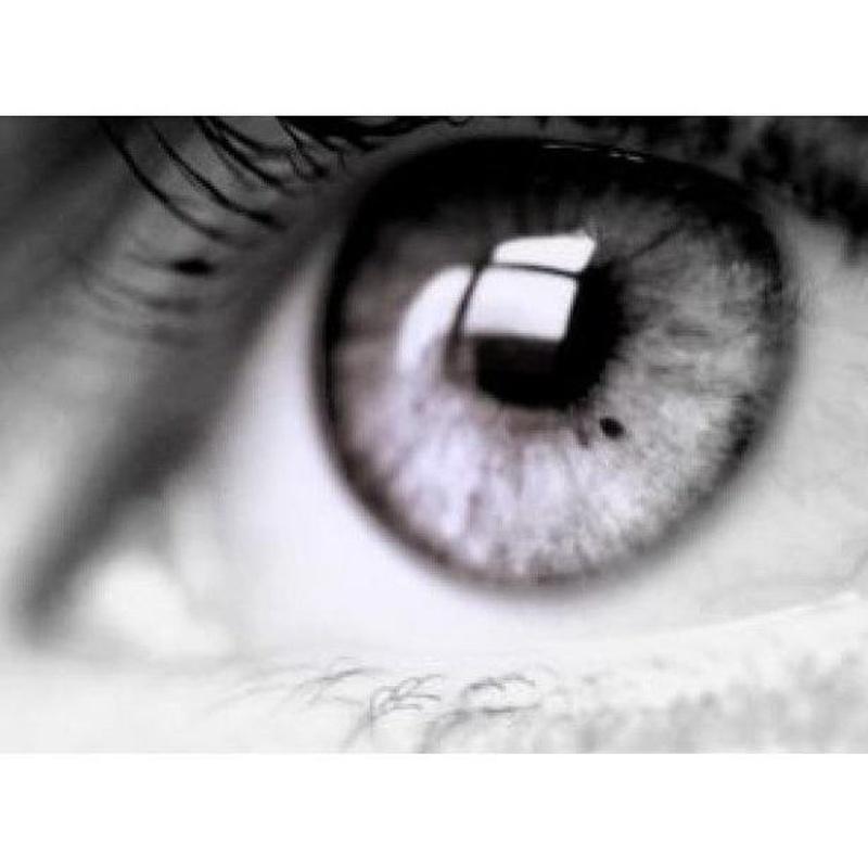 Enfermedades de la retina: Catálogo de Ricardo Herrera