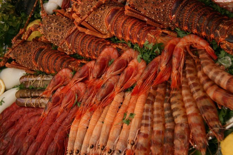 ¿Por qué es bueno comer marisco?