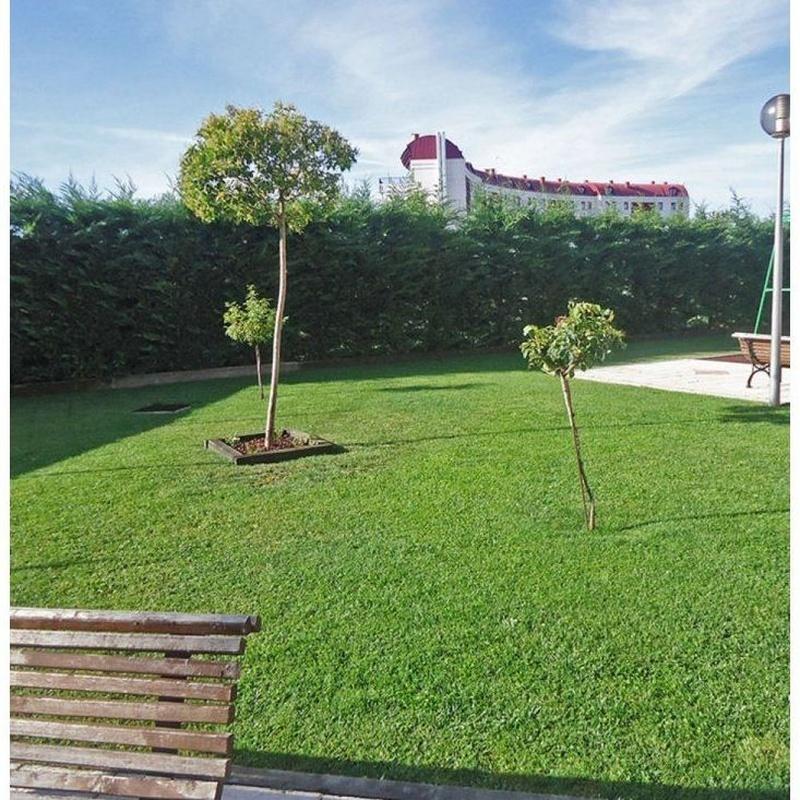 Mantenimiento de jardines: Servicios de Jardinería FG