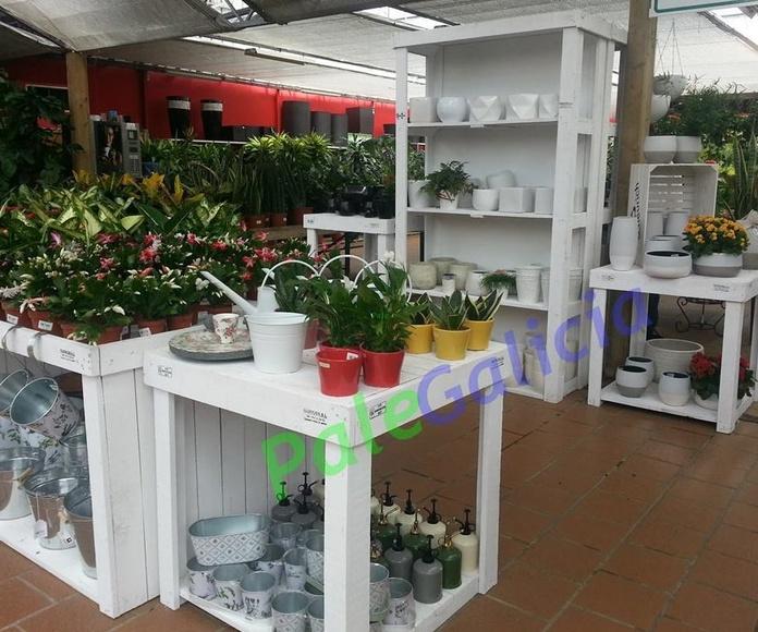 Mobiliario para exposiciones: Productos de Palegalicia