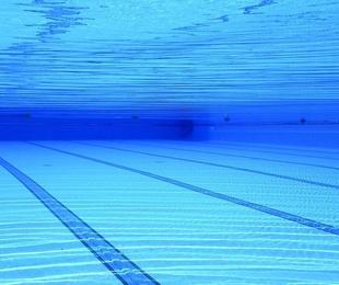 Confirman la leyenda urbana: Orinamos en las piscinas
