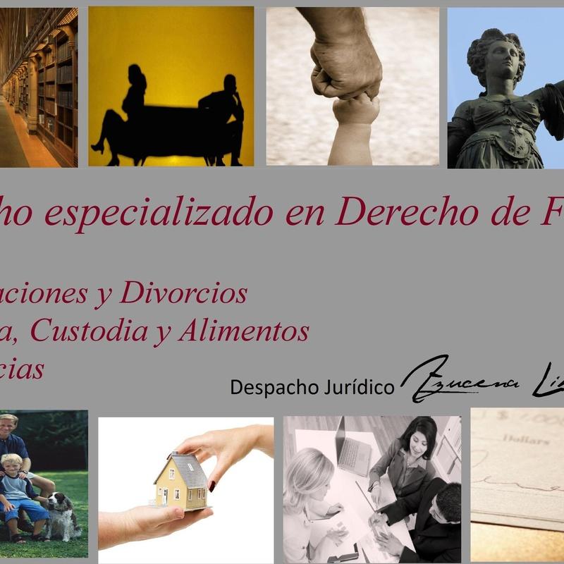 Especialidad: Derecho de familia: Areas y Especialidades de Despacho Jurídico Azucena Librán