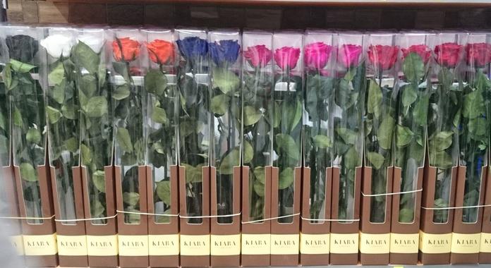 Rosa eterna tallo largo: PRODUCTOS Y SERVICIOS  de Floristería Contreras - BARTOLOMÉ CONTRERAS