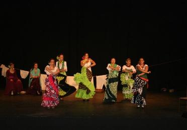 Flamenco adultos
