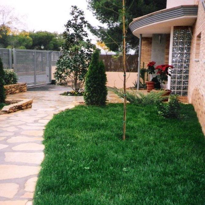 Para diseñar tu jardín mejor llámanos