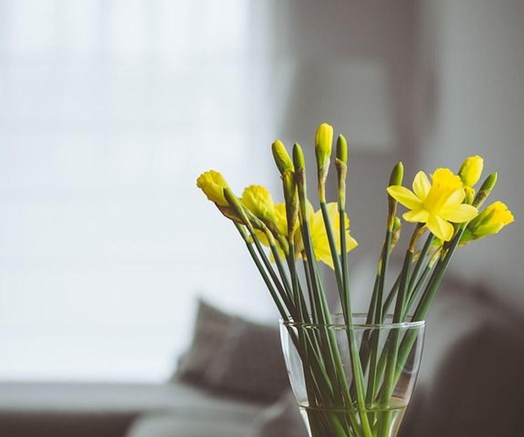 Los colores más de moda para esta primavera