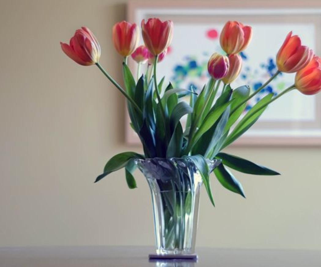 Trucos para conservar las flores por más tiempo