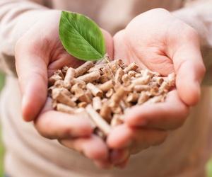 Instalación de biomasa