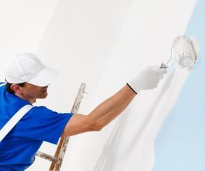 Venta de material para trabajos de pintura