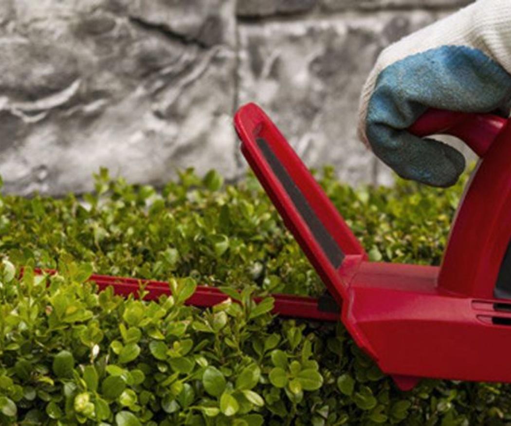 Algunos consejos para la poda del jardín