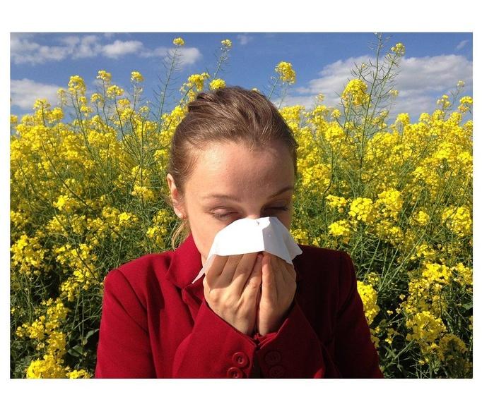 Alergología: Servicios de Clínica Dr. Lobatón