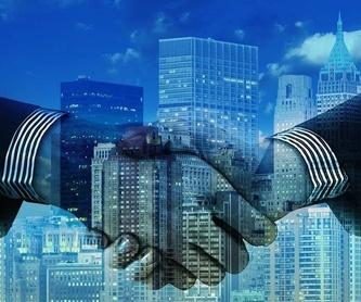 Creación de empresas: Servicios de Asesoría Fiscal, Contable y Seguros (Seguros Bilbao) Esther Lidia Guedes Araña