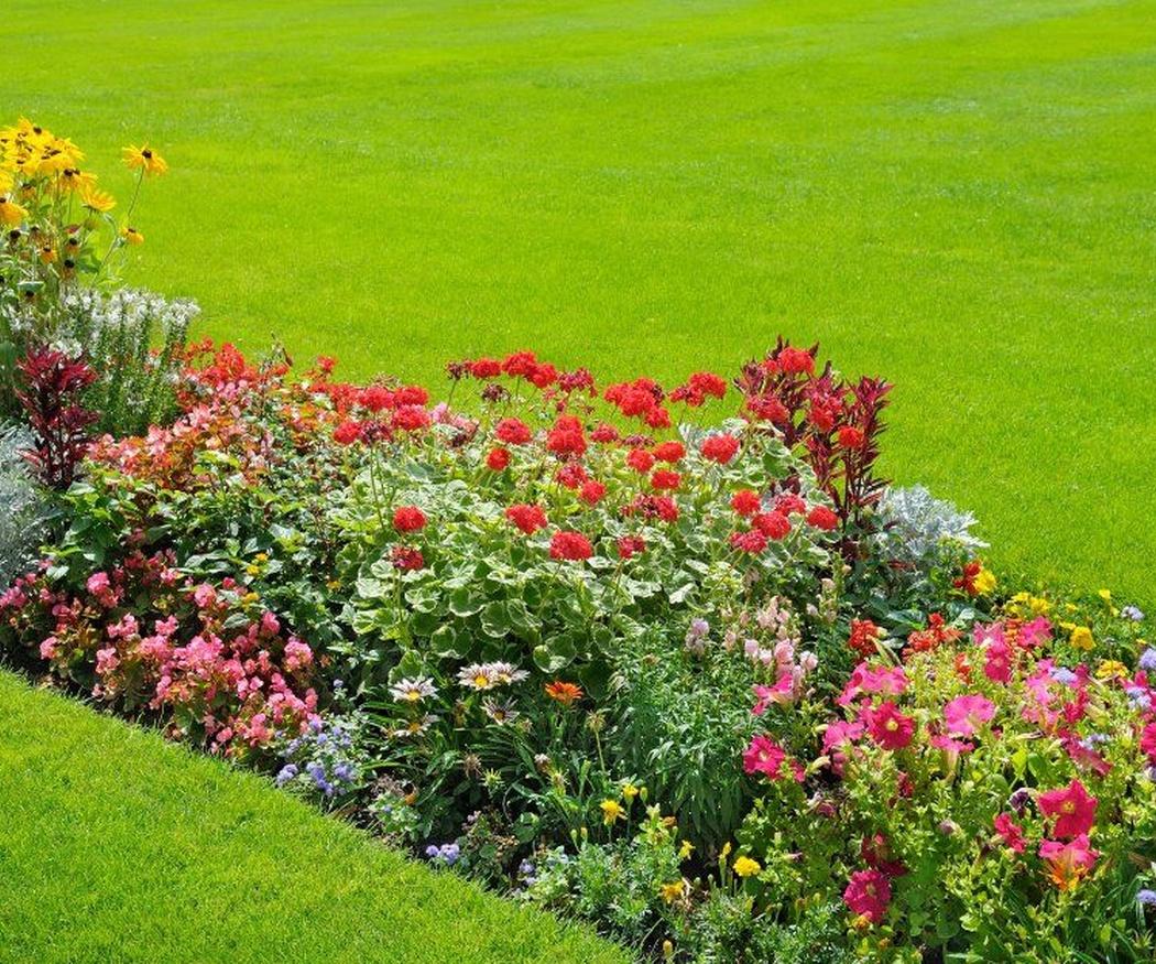 La domótica aplicada en el jardín