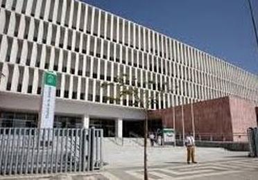 IMPUGNACION JUDICIAL DE RESOLUCIONES Y DECRETOS DE BOLSAS DE EMPLEO Y OPE´