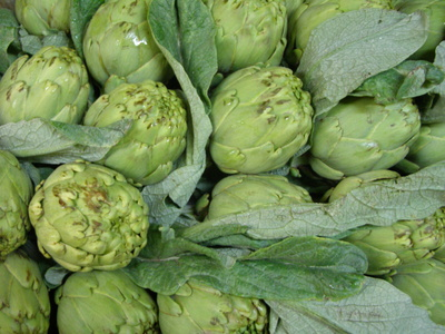 Verduras: Frutas Paula