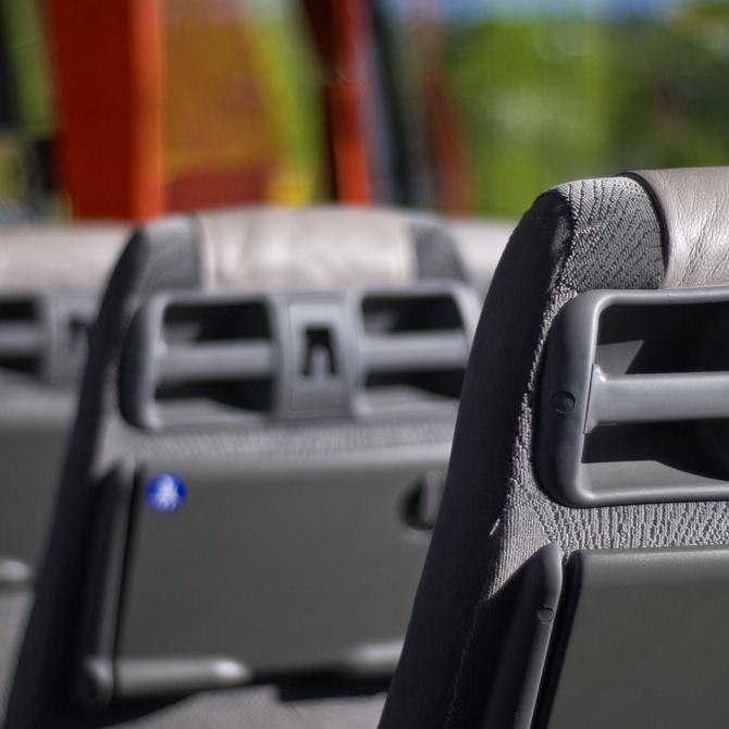 ¿Qué tipos de autocares existen?