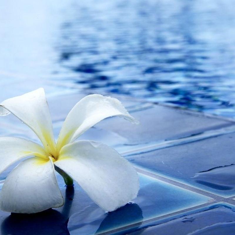 Filtración y herramientas para piscinas